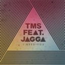 TMS feat. Jagga - I Need You (12 Dirty)