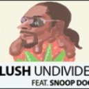 Blush Feat. Snoop Dogg - Undivided (Alex Guadino Extended Remix)