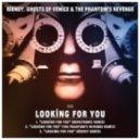 Ridney, The Phantom\'s Revenge, - Looking For You (Ridney Mix)