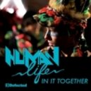 Human Life - In It Together (The Shapeshifters Remix)