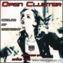 Open Cluster - Bedlam at Midnight (Original Mix)