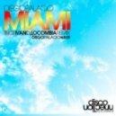 Diego Palacio - Miami  (Re-Edit)
