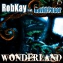 Robkay feat. David Posor - CWonderland (Crystal Rock Remix)