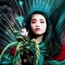 Cyberoptix - Geisha
