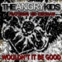 The Angry Kids - Wouldn't It Be Good (Acid Bang Remix)