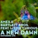 Amex & Bartlett Bros. feat. Lizzie Curious - - A New Dawn