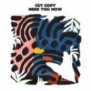 Cut Copy - Need You Now (Carl Craig Remix)