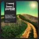 Alexey Sorokin - Mysterious Road (Biotones Remix)