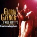 Gloria Gaynor - I Will Survive (Deejay Fiesto Mix)
