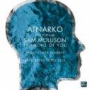 Atnarko & Sam Mollison - Thinking Of You (Pezzners Remix  Fred Everything ReDub)
