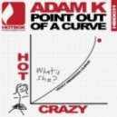 Adam K - Point Out Of a Curve (Club Edit)