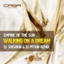 Empire Of The Sun - Walking On A Dream (DJ Shishkin DJ PitkiN Remix)