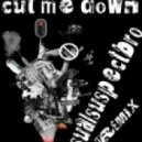 Sasha - Cut Me Down (Retroid Remix)