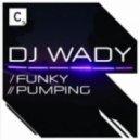 DJ Wady - Funky (Original Mix)
