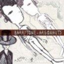 Barrytone - Acid Jazz  (Original Mix)