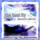 Dj ToJIcT9IK - The Soul Fly (Special for Lidia M)