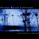 Carbon Based Lifeforms - Comsat