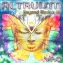 Burn In Noise Vs Altruism/Altruism - Intera (Original Mix)