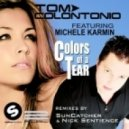 Tom Colontonio feat. Michele Karmin - Colors Of A Tear (Suncatcher Remix)