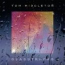 Tom Middleton - glass raindrops (feat. sophie barker)