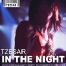 TZESAR - In The Night (Original Mix)