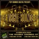 Visible Sound - Lost In Bass