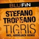 Stefano Tropeano  - Tigris (Audiojack Remix)