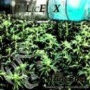 Plex - Drug Bust