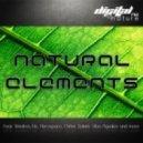 Nitrodrop - Magic Mushroom (Original Mix)