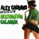 Alex Gaudino - Destination Calabria (DJ Viduta Remix)
