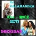 гр. Шеридан - Юга (DJ Salamandra Remix)