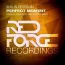 Shaun Greggan - Perfect Moment (Original Mix)
