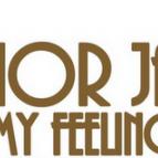 Junior Jack - My Feeling (Dj Leandro Rick-AP Remix)