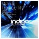 Matrick - Tranquility (Bob Fanzidon Remix)