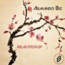 Armando Biz - Wanna Change
