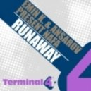 Emin K & Ansarov Pres. Nafa - Runaway (Original Mix)