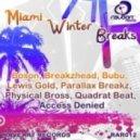 Bubu (Breaks) - Another Planet (Miami Radio Edit 2011)
