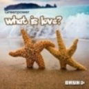 Greenpower Feat Ely Morelli - What is love (Licious K Chillout Session Remix)