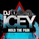 DJ Icey - Cuol (Original Mix)