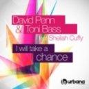 David Penn & Toni Bass feat. Sheilah Cuffy - I Will Take A Chance (Original Mix)