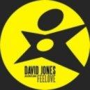 David Jones Pres. Diva & Jones - Feelove (Original Mix)