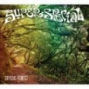 Super Special - Crystal Forest