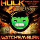Hulk - Watch Em Burn