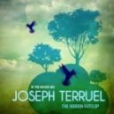 Joseph Terruel - The Jazzy Dub Sensation