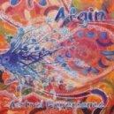Afgin - Journey Through Acid
