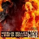 Merlin Milles & Sigi Di Collini - Feels Like Fire (Original Radio Edit)