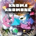 Knowa Knowone - Double Rainbow feat. Chrisb