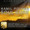 Kamil Polner - Soul Cure (Alive Stone Remix)