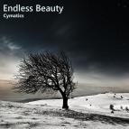 Cymatics - Coming Back (Original Mix)