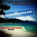 David Jones vs.David Guetta & Nicky Romero & Sia - Satisfied Wild One (Pure Honey & Alex Sprinter Bootleg)